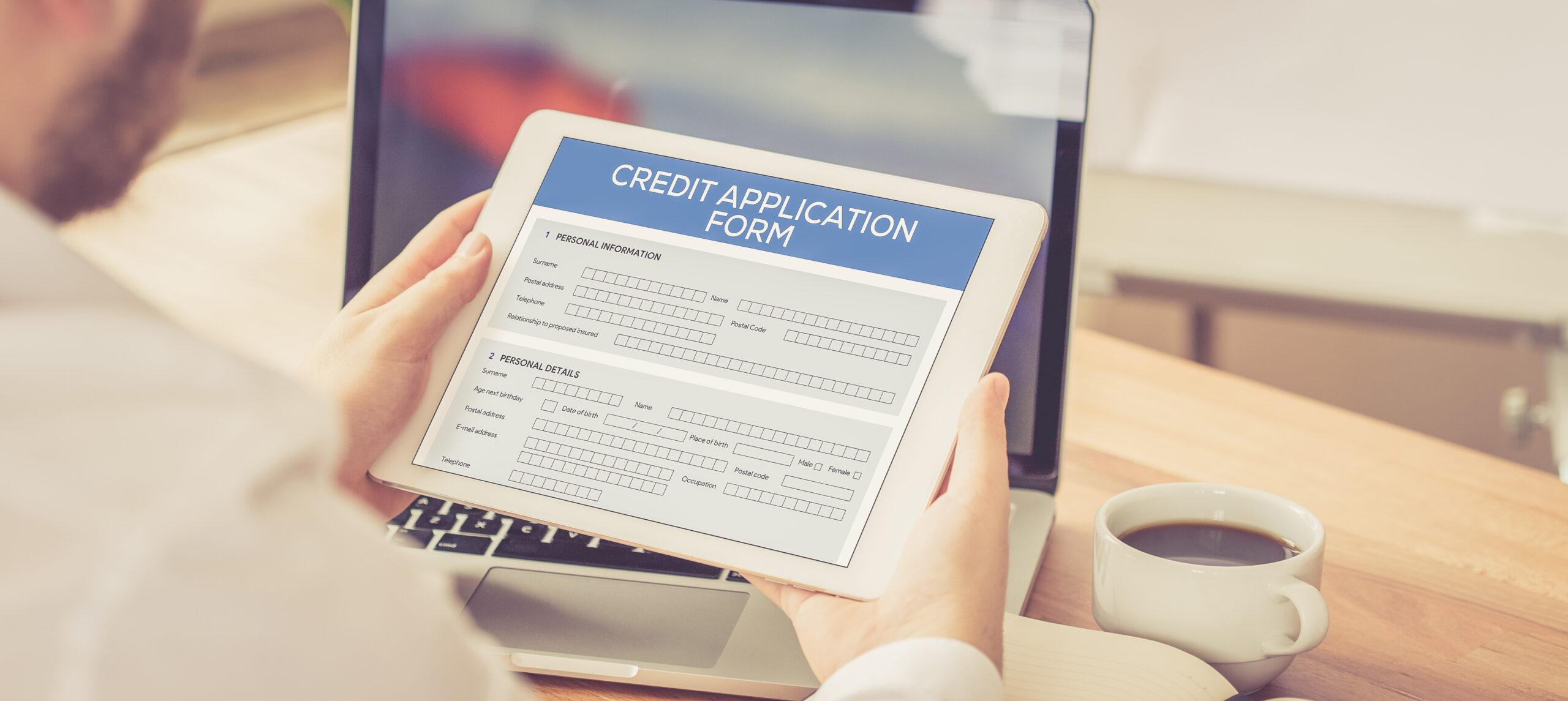 Individual Credit Application